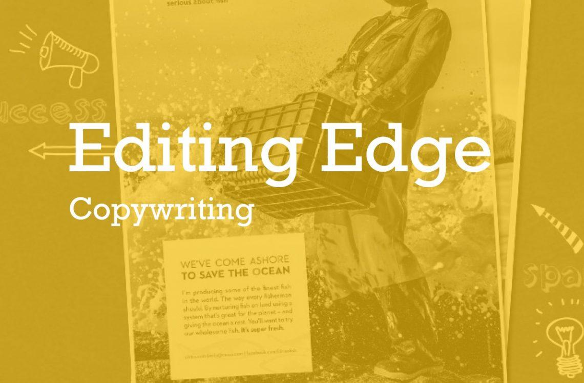 copywriter digital marketing support